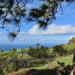 Wanderweg La Palma